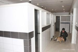 koirahotelli4